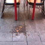 Vomit outside patio doors and indoor furniture used as outdoor furniture