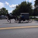 l'unico mezzo di locomozione del popolo Amish