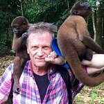 Woolly monkeys climb and clutch, very social, need no support like a cat