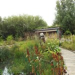 "London Wetlands Centre. Garden with ""recycled"" theme."