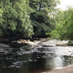 River Roe