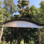 Parco e Percorso Salute Foto