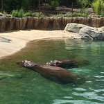 Photo de Dallas Zoo