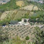 Photo of Agriturismo La Fonte