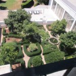 Garden view from the veranda bar