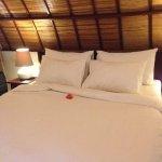 Photo of Manta Dive Gili Trawangan Resort