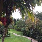 Foto de Arenal Paraiso Hotel Resort & Spa