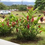 Photo de Maui Kamaole