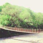 Photo of Nalchik Park
