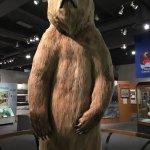 Photo of University of Alaska Museum of the North