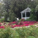 A gazebo just north of the rose garden