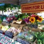 Forest Grove Farmers Market