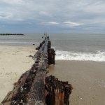 Foto de Buckroe Beach and Park