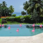 Villa Aquamare照片