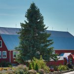Hillier Creek Estates and Winery