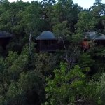 Treetop accommodation with views to the Coral Sea.