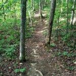 Foto de Lake Brandt Trails
