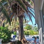 SENTIDO Kaktus Resort Foto