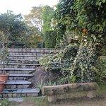 Garden behind villa