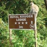Royal Kruger Lodge Photo