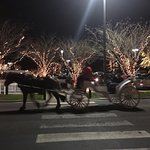 Horse Drawn Carriage Rides