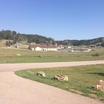View from Dakota Cabin