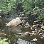 Foto de Ridley Creek State Park