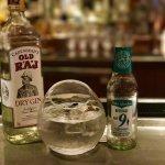 Gin and Cardamon Tonic
