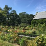The lovely gardens at Peacefield