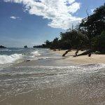 Photo de Red Frog Beach Island Resort & Spa