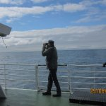 Photo of Arctic Whale Tours