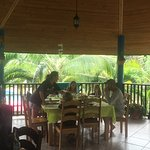 Inn the Bush Eco-Jungle Lodge Photo