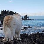 ASPEN enjoys a beach view