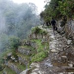 Walking back to Machu Picchu