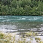 Kenai River from the trail down the hill from the lodge