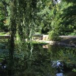 Photo of Japanese Garden - Szczytnicki Park