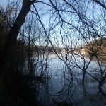View of the river through the naked tree branches during a visit in February.