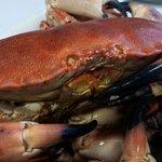 Bous de mar, percebes i salmó salvatge d'Alaska. Tot deliciós!