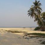 Photo of Heritage Village Club Goa