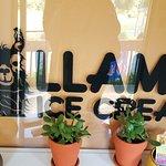 Foto LLama Ice Cream
