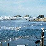Foto de Webb's Scenic Surf Motel