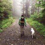Foto de Heavenly Acres Campground