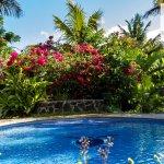 hermosa piscina y jardines con vista desde Taupeas (terrazas) de las habitaciones