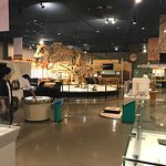 Photo of Nagoya City Science Museum