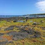 Photo of Pu'uhonua O Honaunau National Historical Park