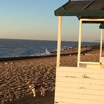 a beautiful early morning walk on Bexhill beach.
