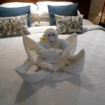 Towel monkey!
