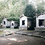 Photo of Zuiryuji Temple