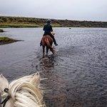 Foto de Sturlureykir Horses/Visiting HorseFarm