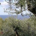 Photo of Villaggio Touring Marina di Camerota